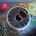 + info. de 'Pulse', Pink Floyd (1995)