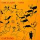 + info. de 'Circuladô Vivo', Caetano Veloso (1992)