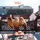 + info. de 'Wilco (the Album)', Wilco (2009)