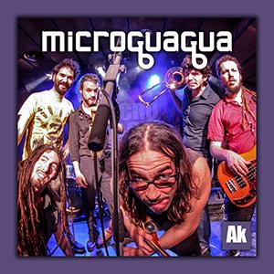 Microguagua (ampliar foto...)